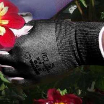 Garden Gloves-Showa Medium Black
