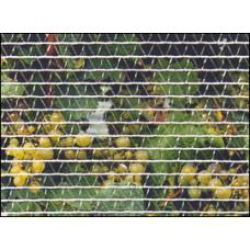 Bird Netting 1.2m width- Econo grade