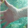 Bird Netting - Olirette Italian (4m wide)