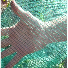Bird Netting - Olirette (4m wide)