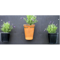 Pot Plant Holder-fixed to wall - silver
