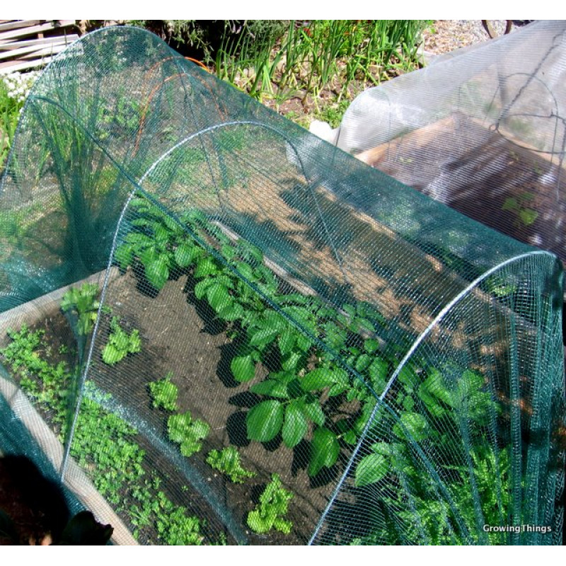Cloche netting Olirete Bird Netting 4m wide Growing Things